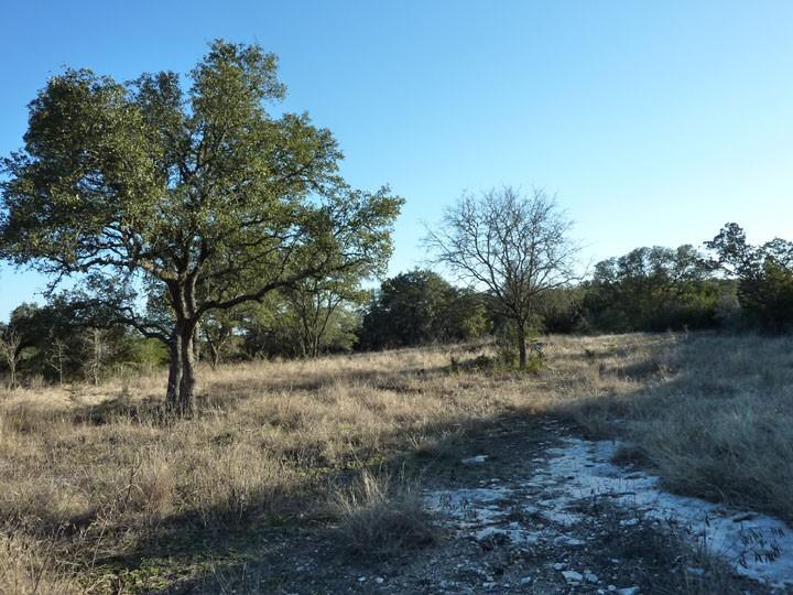 Property For Sale Paradise Canyon San Antonio